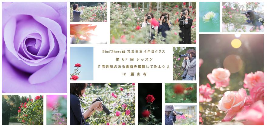 4年目クラス 第67回 「雰囲気のある薔薇を撮影してみよう」 in 霊山寺